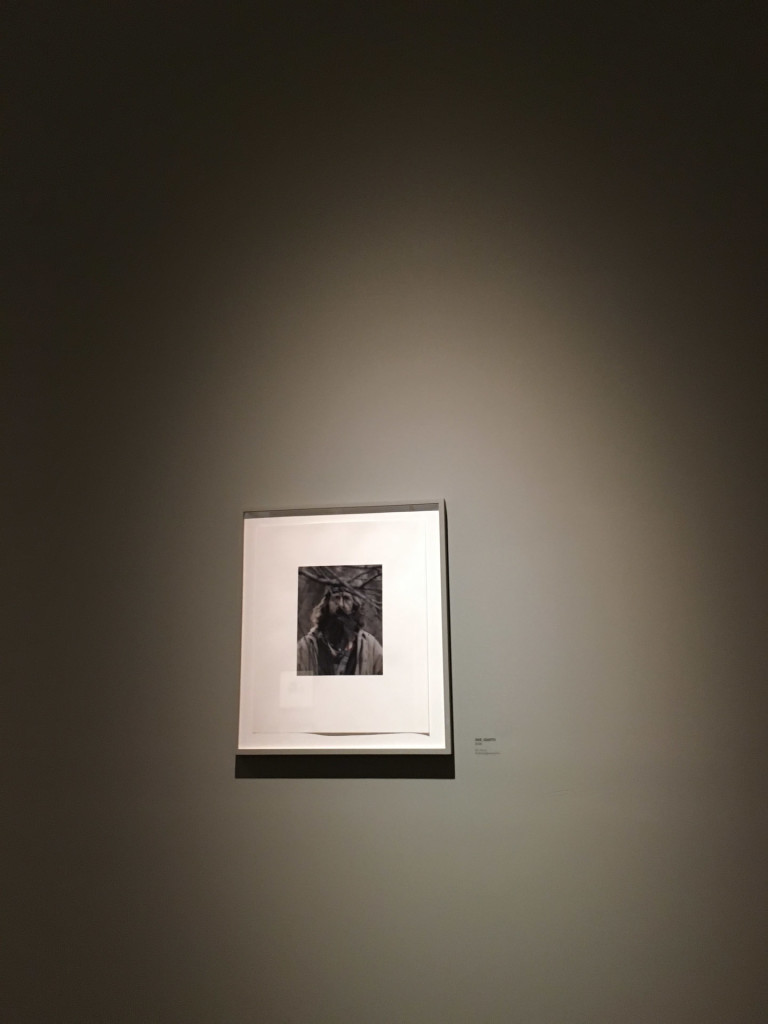 gathered leaves, Alec Soth, Alec Soth's exhibition