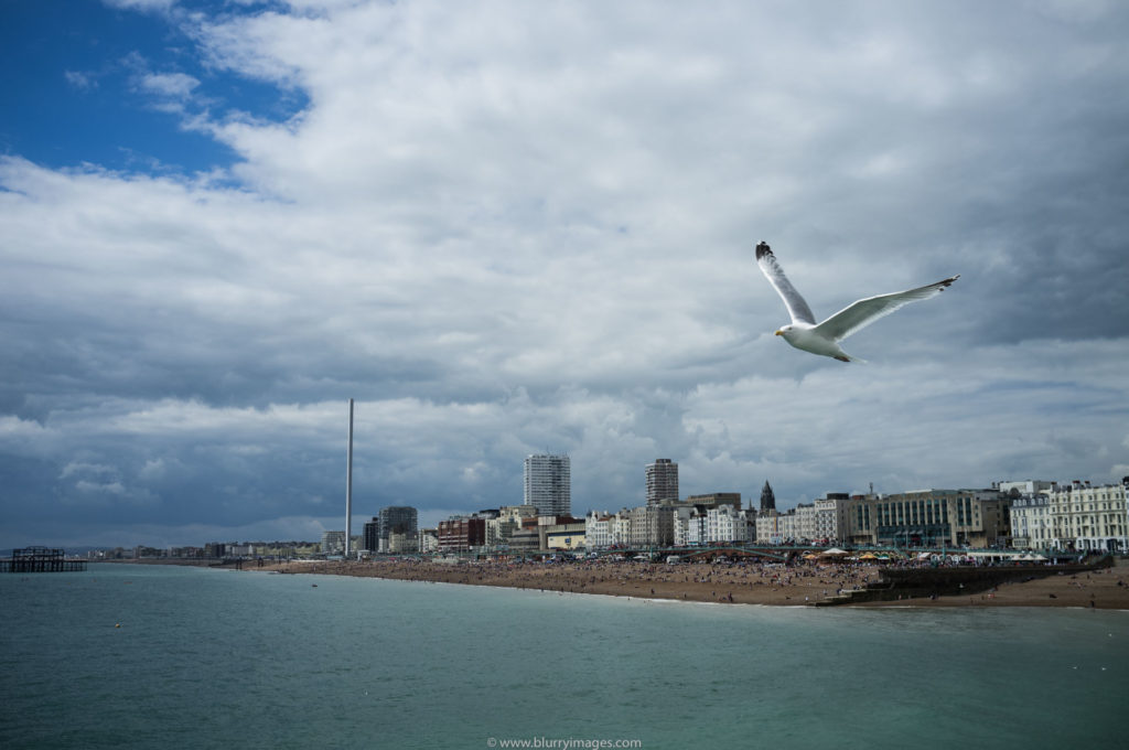 weekend in Brighton, coast in Brighton, pogrobowców brighton